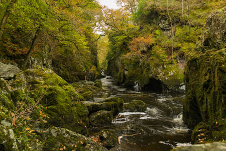 Fairy glen and river conwy in Wales, uk. Stock Photo