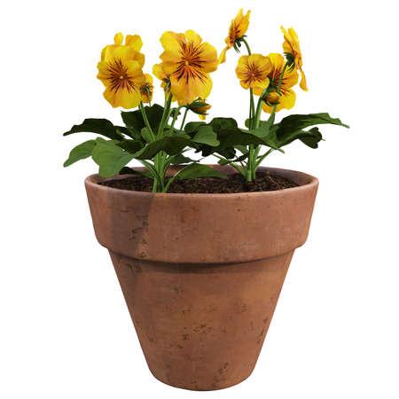Flowers in pots, flowers in barrels, flowers in the vestry bucket. Stock Photo