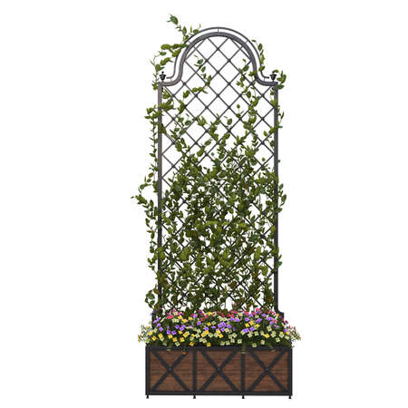 Pergola with flowers and iron grill