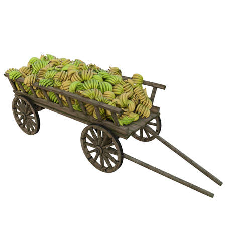 Harvest bananas collected in a wooden cart for shipment to markets and shops