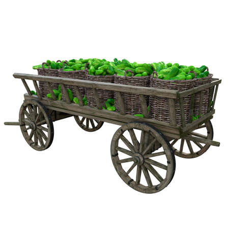 Collected cucumbers piled in wicker baskets standing in a wooden cart before being sent to shops and markets Banco de Imagens