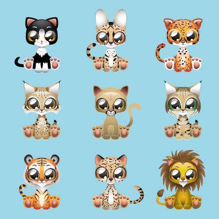 felines: Collection of cute felines