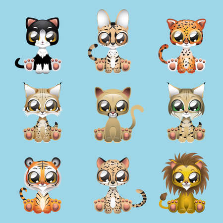 Collection of cute felines