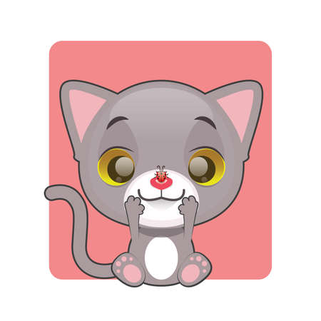 gray cat: Cute gray cat looking at a ladybug on their nose Illustration