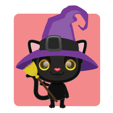 kitten small white: Cute black cat posing as a witch for Halloween