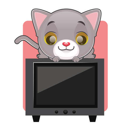 kitten small white: Cute gray cat sitting on top of a television