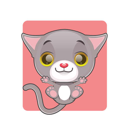 gray cat: Cute gray cat being thrown up in the air