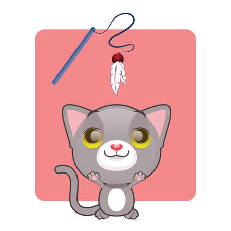 gray cat: Cute gray cat jumping to catch toy