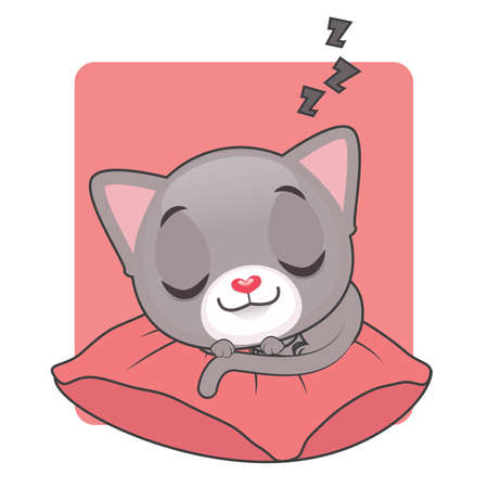 gray cat: Cute gray cat sleeping on a red comfortable pillow