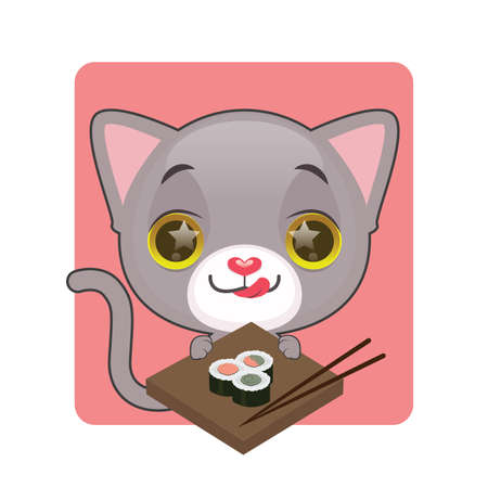 kitten small white: Cute gray cat eager to eat sushi