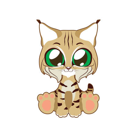 Cute bobcat vector illustration art in flat color Ilustrace