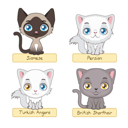 Süße Katzen Variation Vektorgrafik
