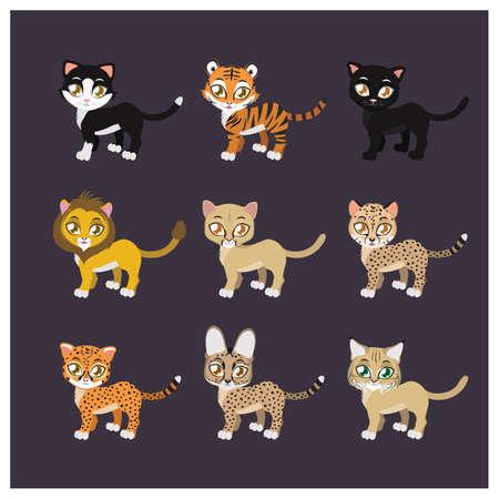 Collection of nine feline species