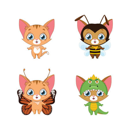 Little orange tabby and it's various animal costumes