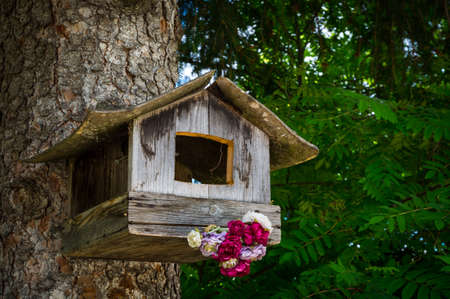 A birdhouse hanging on a pine tree in a forest in Tyrolean alps