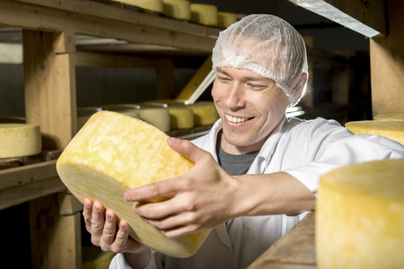 food plant: Producing fresh cheese at factory in Russia