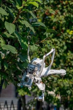 risky innovation: Crashed quadcopter after an accident hanging on a tree