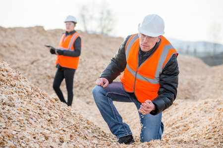 paper mill: Paper mill factory workers standing on piles of little wood chips Stock Photo