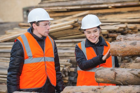 Two workers with cut trees on the backgound Stock Photo