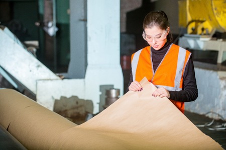 paper mill: Paper mill factory worker checking paper quality