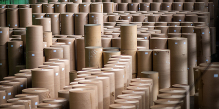 Paper mill factory. Storage of produced paper rolls.
