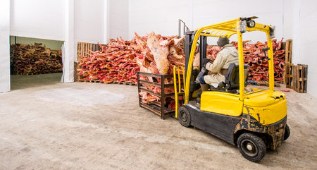 Stored frozen meat at a meat factory before processing 版權商用圖片