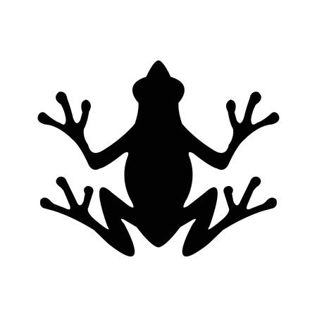 exotic frog: Frog Illustration