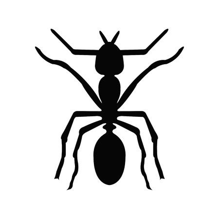 antrey: Ant