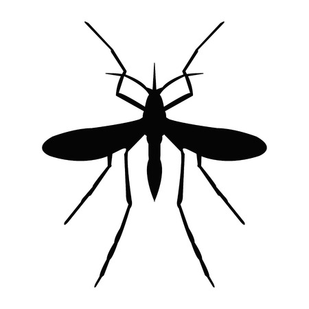 disease carrier: Mosquito