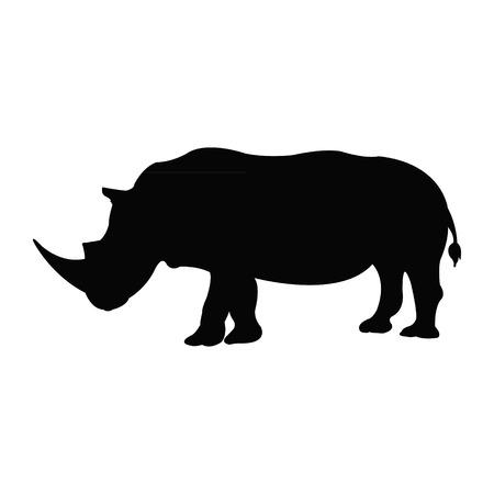 endangered species: Rhino