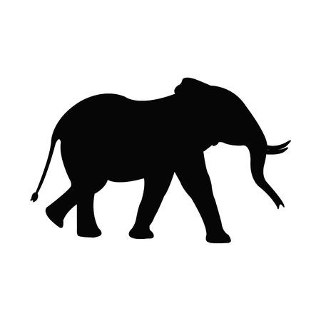 asian elephant: Elephant Illustration