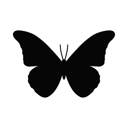 Butterfly Stock Vector - 30499836