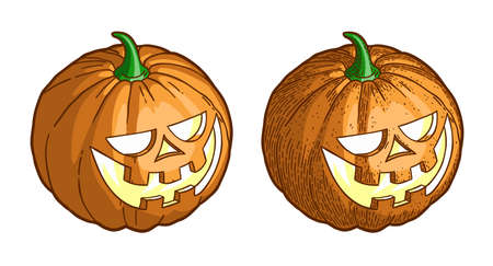 Halloween pumpkin. Color vintage illustration in engraving style.