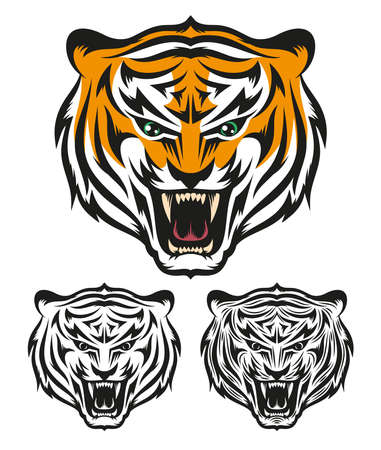 Illustration of painted and bw tiger face isolated on white.