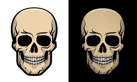 Realistic colored human skull with shadows