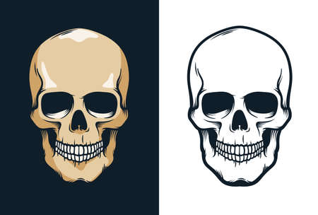 Skull in retro vintage style 向量圖像