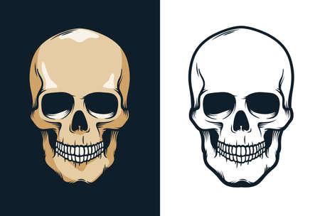 Skull in retro vintage style Illustration