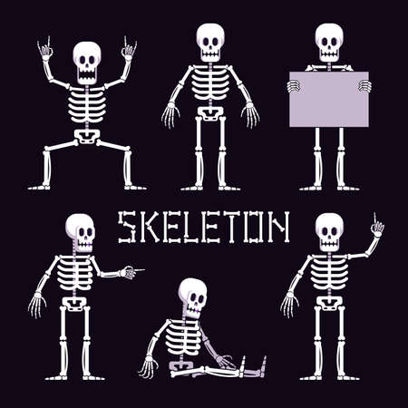 Skeleton in various poses is cartoon style. Funny skeleton with various gestures. Vector illustration.