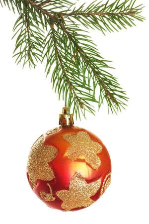 evergreen branch: Bola de Navidad en la rama de abeto aislado sobre fondo blanco Foto de archivo