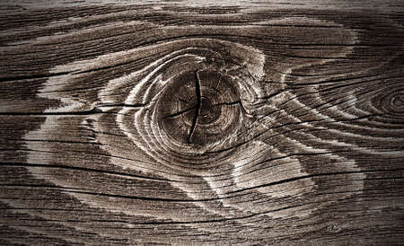 Macro view of wood knot stylized