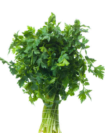 curly leafed: Bunch of fresh parsley isolated over white background Stock Photo