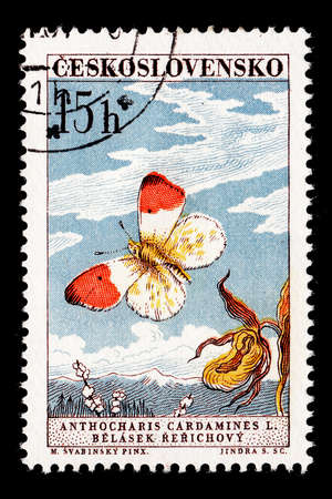 stamp photo