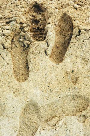 suelo arenoso: huella