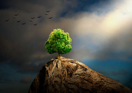 tree alone on rocky mantle with faint light coming from the sky, 3D rendering