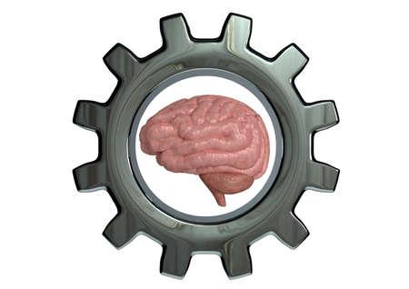 Mindset Training concetto di alte prestazioni mentali, sviluppo delle capacità cognitive e cerebrali. Rendering 3D