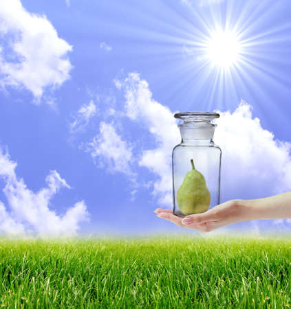 Hand holding glass bottle containing pear over nature landscape. Front view