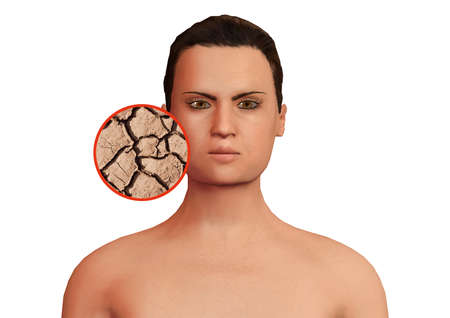 dry facial skin of the woman zooming in on the circle, undergoing treatment or reconstruction therapy. 3D rendering