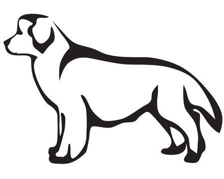 cane terranova: Stilizzata immagine cane di Terranova