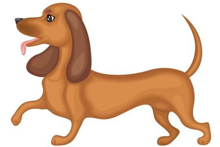Cute brown dog breed dachshund running Illustration