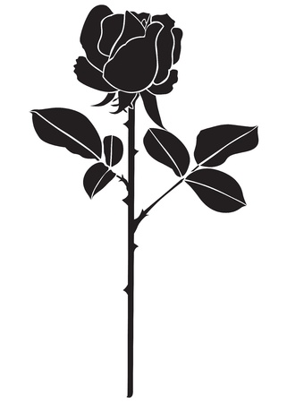 The silhouette of a beautiful flowering rose with two leaves Vector